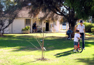 Halls Cottage Exterior